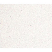 Karton B4 250g brokatowy biały x5