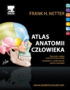 Atlas anatomii człowieka - zdjęcie 2