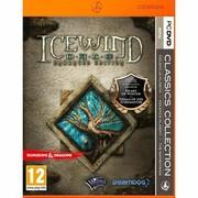 Gra PC PKK Icewind Dale Enhanced Edition