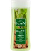 Joanna Naturia szampon z brzozą i łopianem do włosów przetłuszczających się 200 ml REALIZACJA ZAMÓWIEŃ W 1 DZIEŃ ROBOCZY Joanna