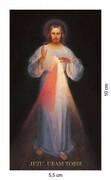 Obrazek Jezus Miłosierny. Jezu ufam Tobie. Koronka do Miłosierdzia Bożego (z Wilna) - 06239