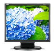 NEC Monitor 17 cali LCD MS E172M bk DVI 1280x1024, HDMI, VGA NEC 60005020