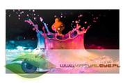 Samsung Monitor 55 cali UD55E-B Samsung LH55UDEBLBB/EN