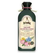 Receptury Babuszki Agafii - Szampon Ziołowy Miękki - Do Farbowanych I Zniszczonych Włosów 350 ml