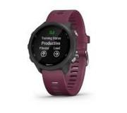 Zegarek sportowy GPS Garmin Forerunner 245