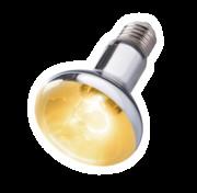 Repti-Zoo SuperSun 75W - lampa żarowo-rtęciowa