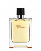 Hermes Terre D'Hermes woda toaletowa męska (EDT) 100 ml