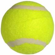 Piłka do tenisa ziemnego ENERO 223030