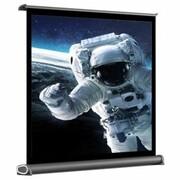 Ekran projekcyjny ART PT-40 81x60